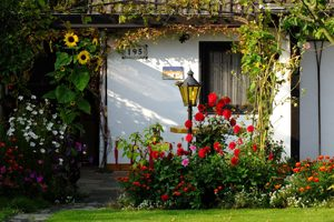garden-1131833_1920