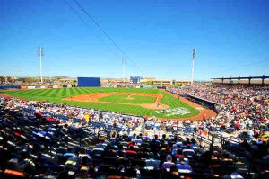 baseball stadium in town of peoria protected by crazylegs pest control