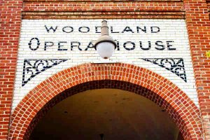 woodland opera house protected by crazylegs pest control