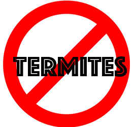 prevent termites in clearwater