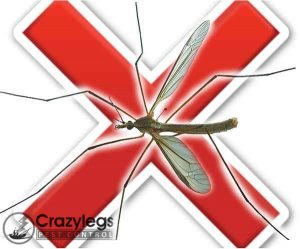 prevent bugs in deltona with crazylegs pest control