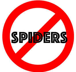 prevent spiders in jacksonville