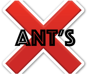 prevent ants in palm harbor