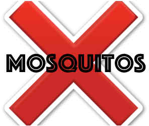 prevent mosquitos in spring hill