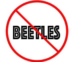prevent beetles in apple valley mn with crazylegs pest control