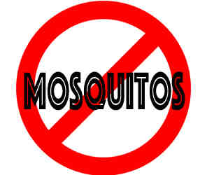 remove mosquitos in appleton wi with crazylegs pest control