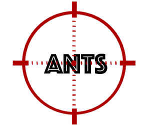 prevent ants in blaine mn with crazylegs pest control
