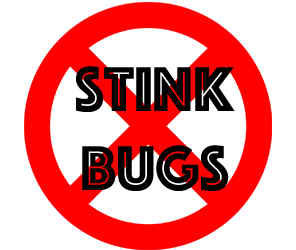 prevent stink bugs in brooklyn park mn with crazylegs pest control