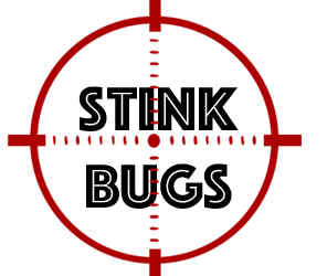 prevent stink bugs in burnsville mn with crazylegs pest control