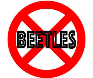 prevent beetles in eagan mn with crazylegs pest control