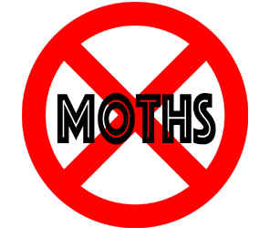 prevent moths in eden prairie mn with crazylegs pest control