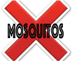 remove mosquitos in green bay wi with crazylegs pest control
