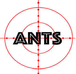 prevent ants in oak park with crazylegs pest control