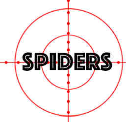 prevent spiders in orland park il with crazylegs pest control