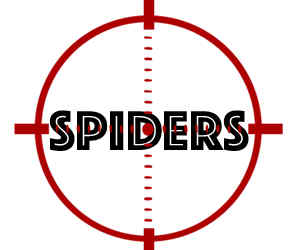 prevent spiders in rochester mn with crazylegs pest control