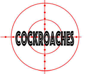 crazylegs pest control removed cockroaches in rockford il