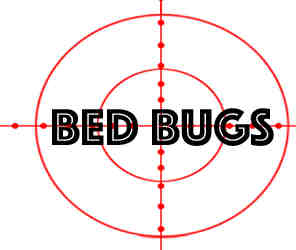 remove bedbugs in schaumburg with crazylegs pest control
