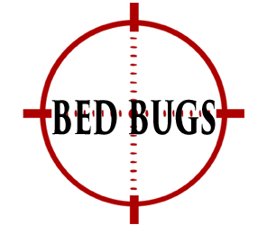 protect your home from bed bugs in allentown with crazylegs pest control