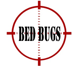 prevent bed bugs in columbus oh with crazylegs pest control