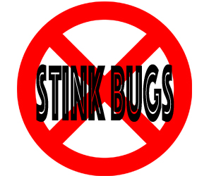 prevent stinkbugs in dearborn heights with crazylegs pest control