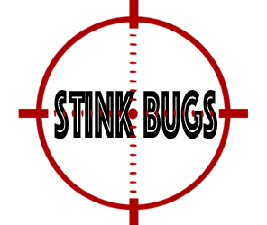prevent stink bugs in detroit with crazylegs pest control