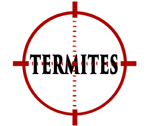 protect your home in elkhart in from termites with crazylegs pest control