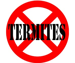 prevent termites in elyria oh with crazylegs pest control