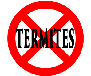 protect your home in gary in from termites with crazylegs pest control