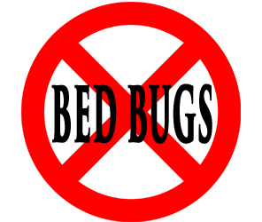 protect your home in greenwood in from bed bugs with crazylegs pest control