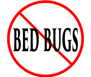 protect your home from bed bugs in lancaster with crazylegs pest control