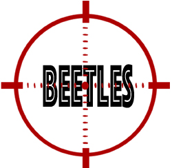 prevent beetles in livonia with crazylegs pest control