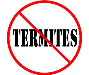 prevent termites in lorain oh with crazylegs pest control