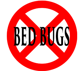 protect your home from bed bugs in scranton with crazylegs pest control