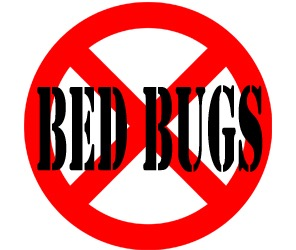 prevent bed bugs in springfield oh with crazylegs pest control