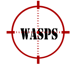 prevent wasps in st clair shores with crazylegs pest control