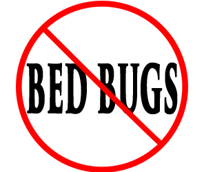 protect your home in terre haute in from bed bugs with crazylegs pest control
