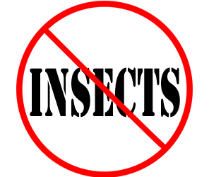 protect your home or business from insects in wyoming mi with crazylegs pest control