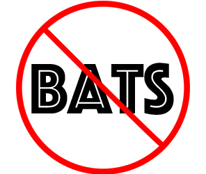 prevent bats in brookhaven with crazylegs pest control