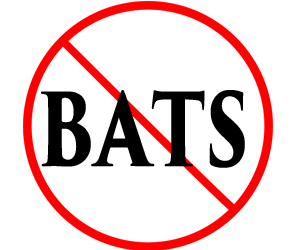protect your home from bats with crazylegs pest control