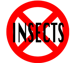 prevent insects in camden with crazylegs pest control