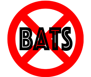 prevent bats in new rochelle with crazylegs pest control
