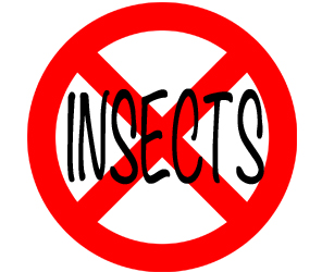 prevent insects in medford with crazylegs pest control