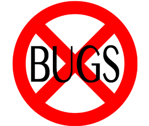 eliminate bugs in quincy with crazylegs pest control