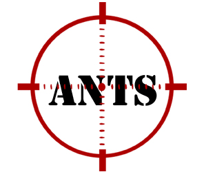 prevent ants in southfield with crazylegs pest control